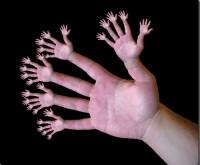 Фракталы - руки на пальцах:)